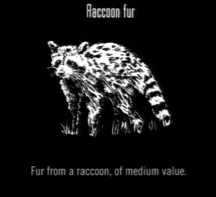 File:Animals Raccoon Fur.jpg