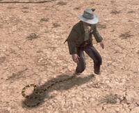 Rattlesnake-nipping-at-heels