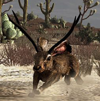 File:Rdr jackalope run.jpg