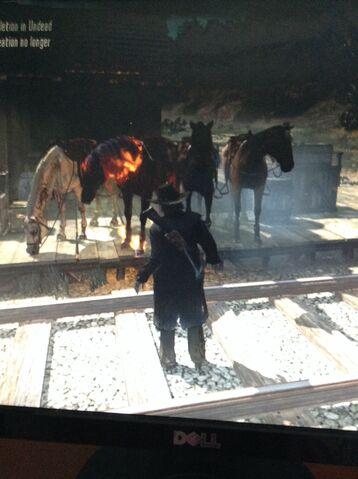 File:Four horses.jpg