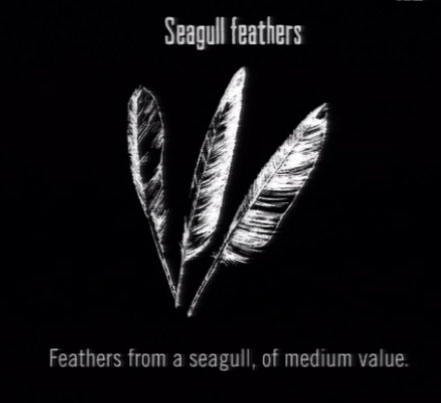 File:Animals Seagull Feathers.jpg