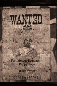 Wanted MEMO