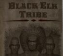 Black Elk Tribe