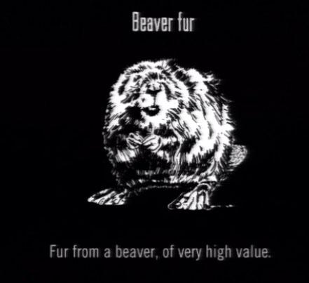 File:Animals Beaver Fur.jpg