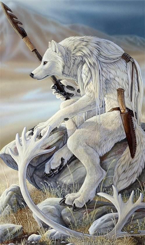 White-Werewolf-bitefight-werewolves-9209751-498-842