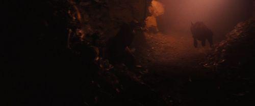 File:Red-Riding-Hood-BluRay-2011-Film-red-riding-hood-23980462-500-208.jpg