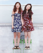 SeulRene For High Cut Magazine Summer June 2017 2