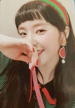 Irene The Red Summer Photocard