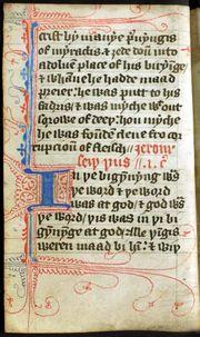 Wycliffe John Gospel