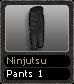 Ninjutsu Pants 1