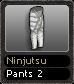 Ninjutsu Pants 2