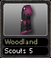 Woodland Scouts 5