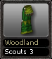 Woodland Scouts 3