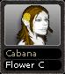 Cabana Flower C