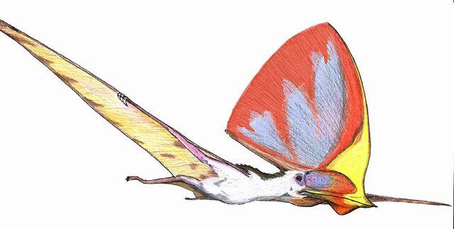 File:Tupandactylus imperator.jpg