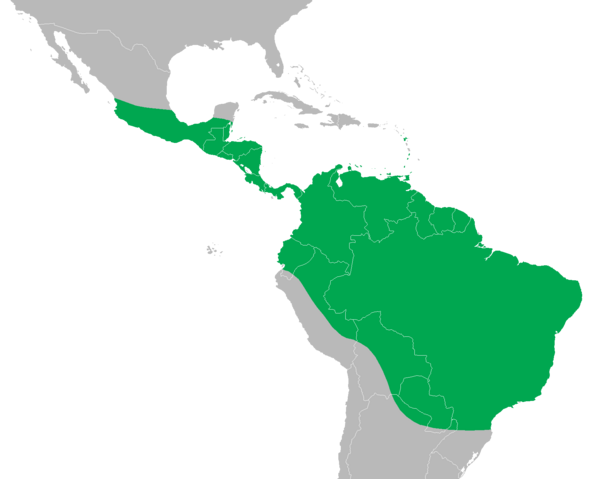 File:Iguana iguana distribution map.png