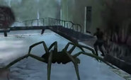 Giant... spider