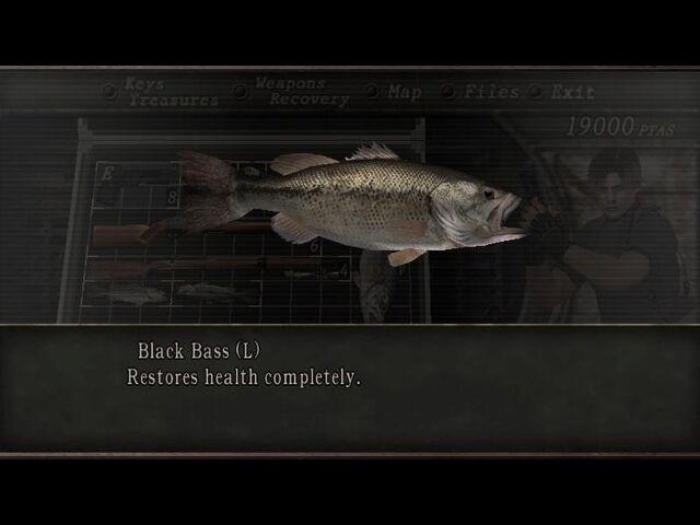 File:Bass.jpg