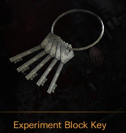 File:Experiment Block Key.jpg