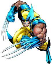 Wolverine14