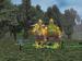 Player Event Scene