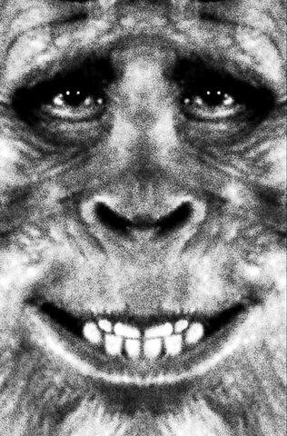 File:10-1-bigfoot-harry fullface.jpg