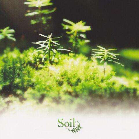 File:Soil arrange album.jpg