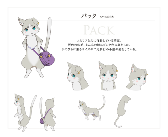 File:Pack Character Art.png