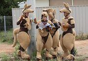 Amazing-race-18-kangaroo-suits