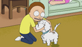 S1e2 morty affectionate.png