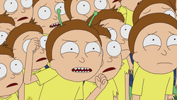 Antenna Morty