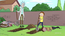 Rick-and-Morty-Season-1-Episode-6-Self-Burial