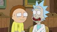 S1e5 rick cheers up morty