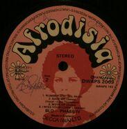 Afrodisia DWAPS2009 B