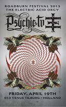 Roadburn 2013 - Psychic TV