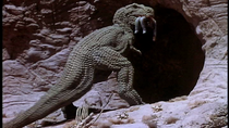 Planetofdinosaurs