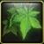 Albidis Plant Icon