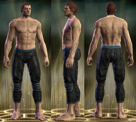 File:PvP R6 Leather Stalker Legs Male.png