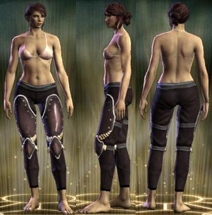 PvP R6 Plate Leg Brigadier Female