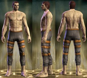 ED Chain Legs Male