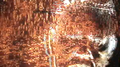 Thumbnail for version as of 04:58, June 4, 2012