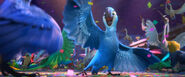 Rio 2 New Year's Eve Clip 20th Century FOX (720p).mp4 snapshot 01.13 -2013.12.27 18.56.12-