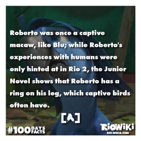 File:Rio-Wiki-100Days100Facts-052.jpg