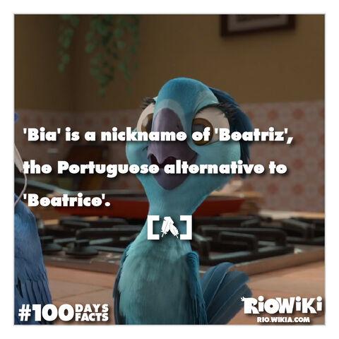 File:Rio-Wiki-100Days100Facts-017.jpg