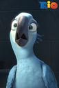 IPhone Wallpaper Angry Birds Rio Jewel