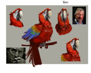 Nero bird