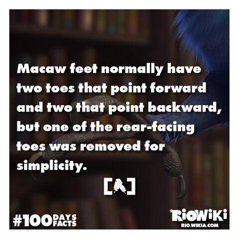 File:Rio-Wiki-100Days100Facts-068.jpg
