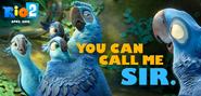 Rio 2 You call me sir