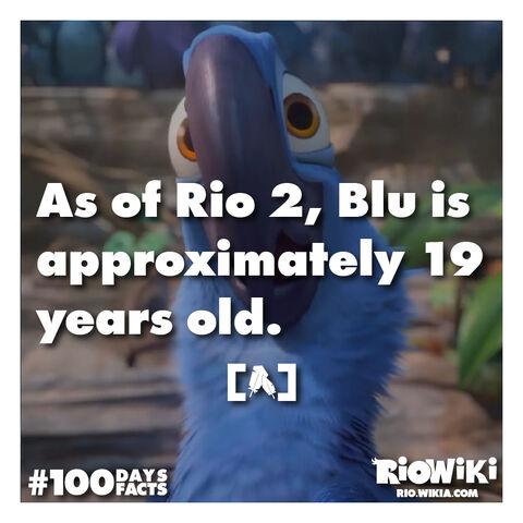 File:Rio-Wiki-100Days100Facts-094.jpg