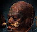 Высушенная голова